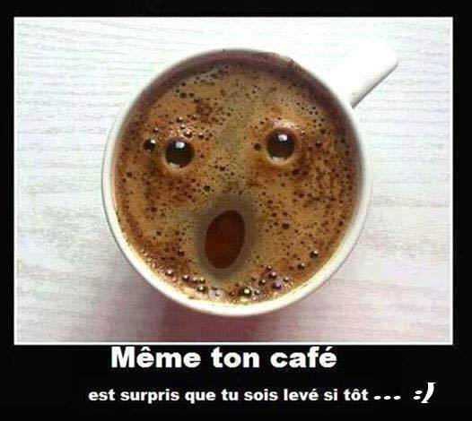 humour - Page 37 14433014