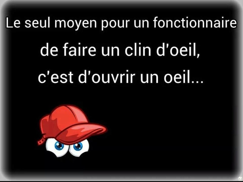humour - Page 37 14433112