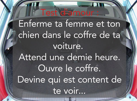 humour - Page 4 14479714