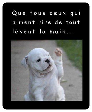 humour - Page 38 14502910