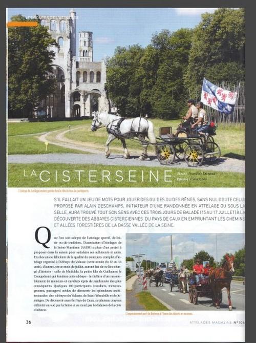 """Clap de fin : Comportement """"indigne"""" du rédacteur d'Attelages Magazine""""! Page_310"""