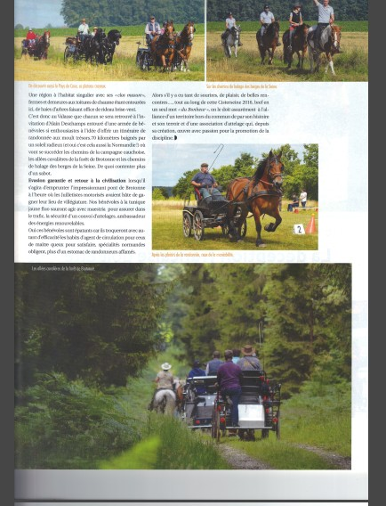 """Clap de fin : Comportement """"indigne"""" du rédacteur d'Attelages Magazine""""! Page_311"""