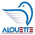 Création d'entreprises Logo_a12