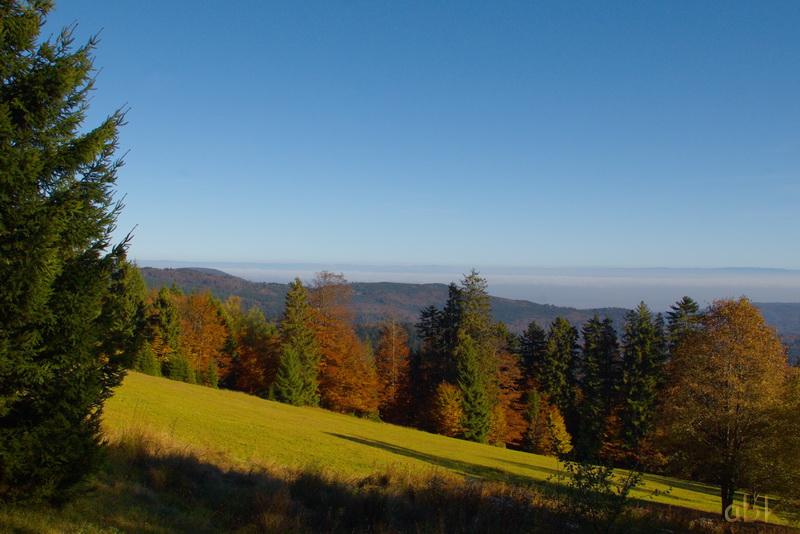 La Rothlach - Champ du feu ( 30.10.16 ) Chemin22