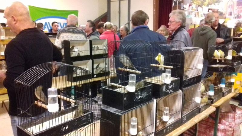 bourses d'oiseaux a flemalle - Page 2 20161048