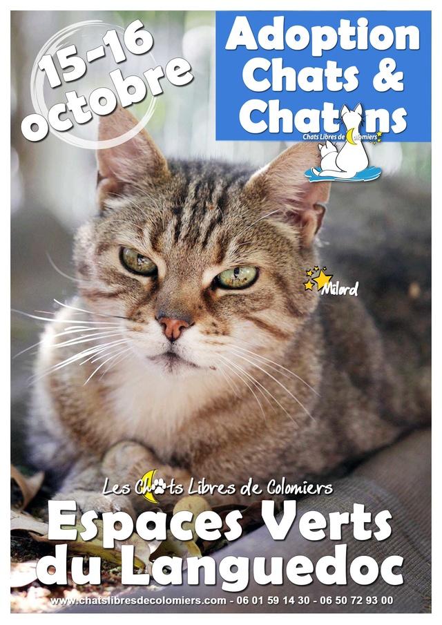 Week-end adoptions aux Espaces Verts du Languedoc, 15 et 16 Octobre Affich11