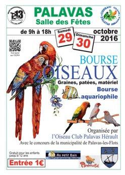 Bourse aux poissons le 29 et 30 octobre 2016 Affich12