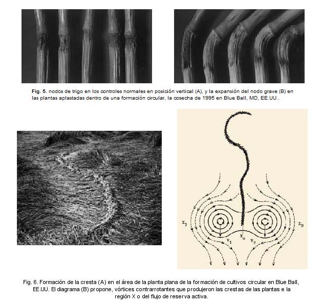 El Misterio de los Crop Circles - Círculos de las Cosechas Blueba10