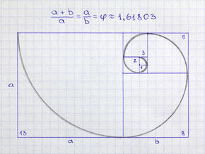 Matemáticas de la Naturaleza: Fractales y Fibonacci Espira10
