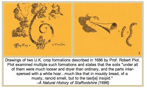 El Misterio de los Crop Circles - Círculos de las Cosechas Estudi19