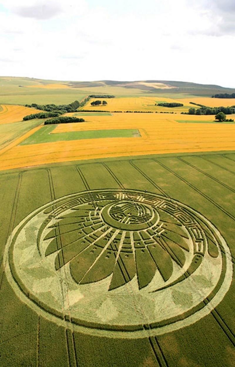 El Misterio de los Crop Circles - Círculos de las Cosechas Silbur10