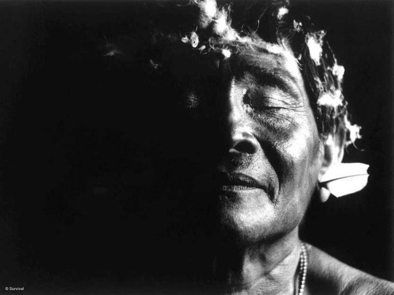 """Yanomami  """"Aprendemos con los grandes espíritus"""" Yanoma13"""