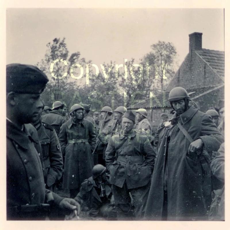 Dragons portés de Guilhem au 1/72 Prison10