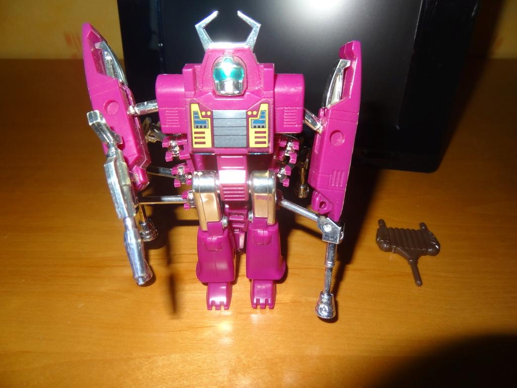 L'alliance Gobots/Transformers débarquent dans le 71 ! - Page 15 Dsc05925