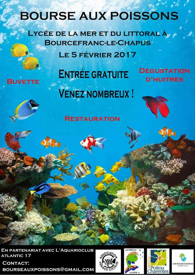 Bourse de Bourcefranc Affich13