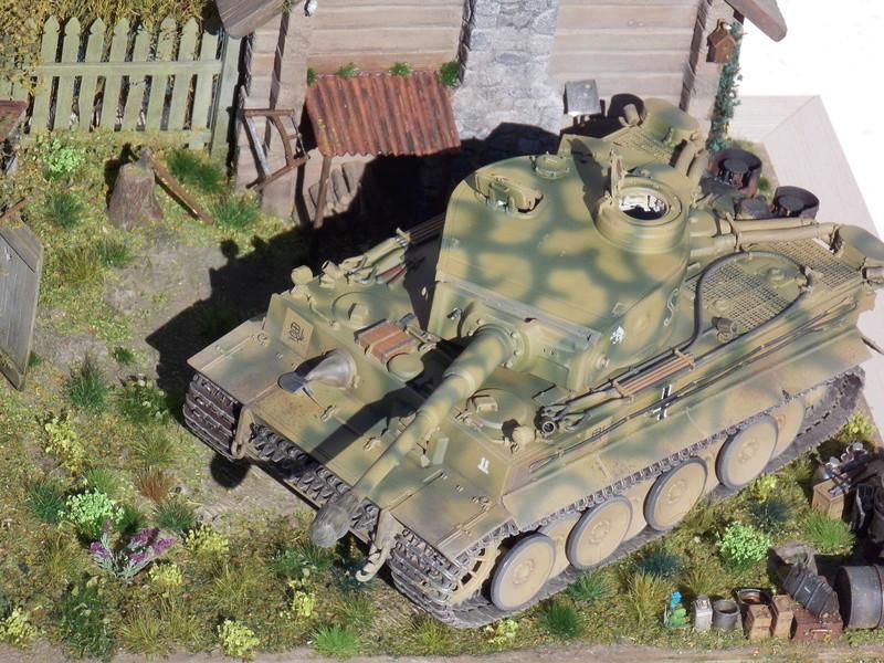 Kursk JUILLET 43 (tigre dragon dio DIODUMP) 1/35 - Page 2 Dscn4615