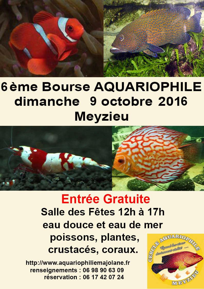 Bourse aquariophile de Meyzieu 09/16 Aff0110