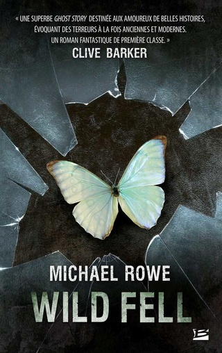 WILD FELL de Michael Rowe 1609-w10
