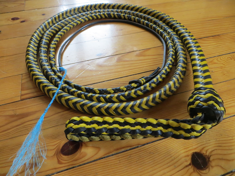 nouvelle paire école et 10ft SNAKEWHIP Black and Yellow Img_6510