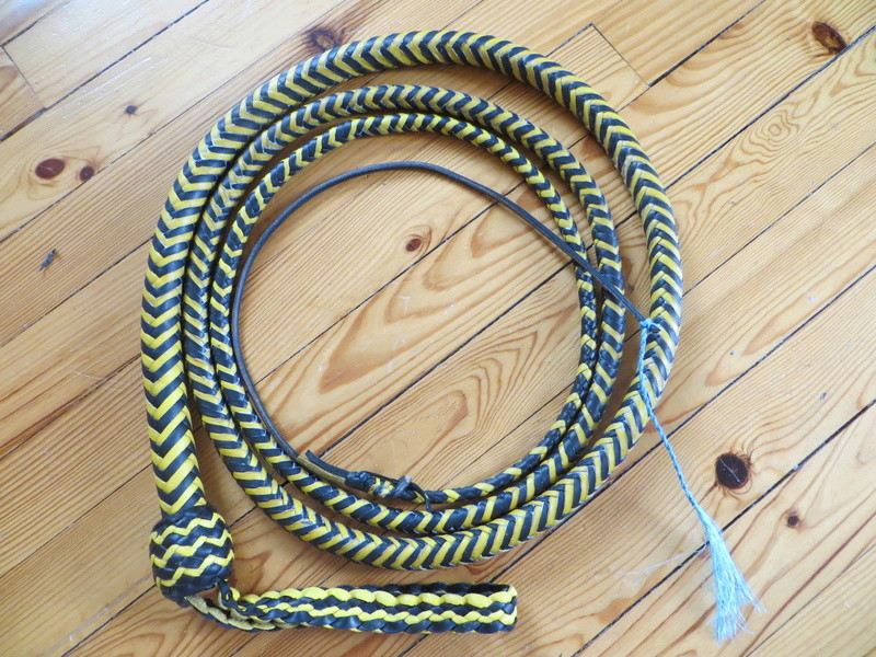 nouvelle paire école et 10ft SNAKEWHIP Black and Yellow Img_6512