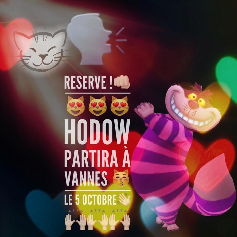 """hodow - Hodow Chat Européen tigré Né en 2012 """"Fidèle et calin"""" Unname10"""