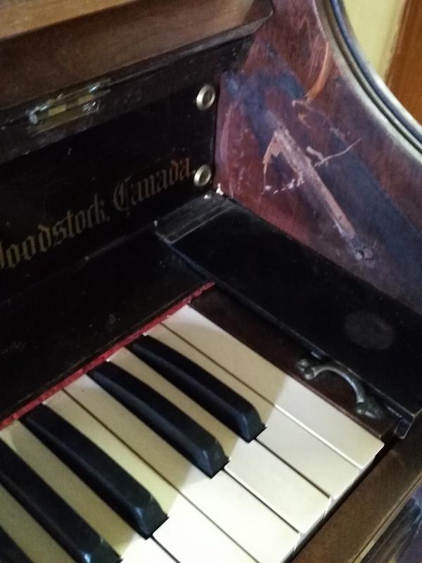 Mon nouvel harmonium D.W.KARN Img_2012
