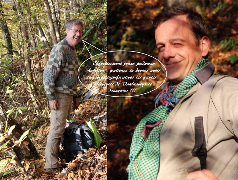 Flore Carbonifère des Alpes Françaises part 1 - Page 4 Jeune_11