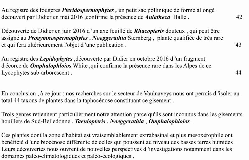 Flore Carbonifère des Alpes Françaises part 1 - Page 4 Vaulna12