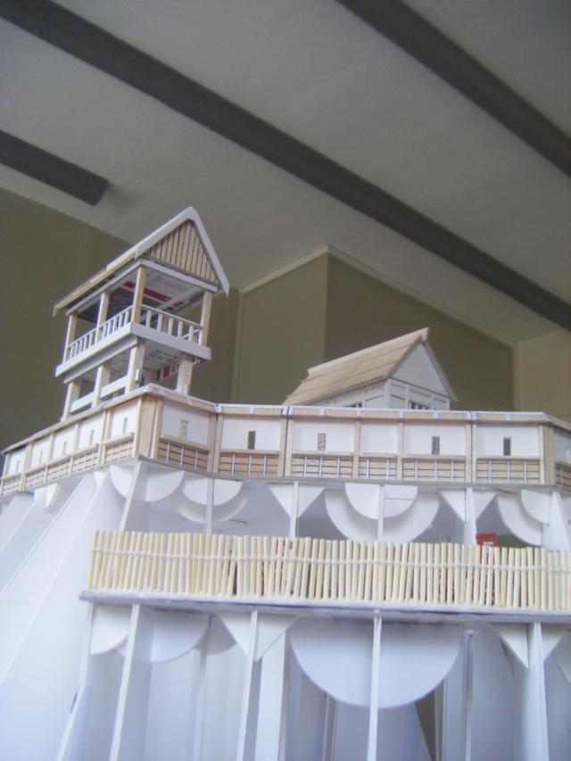 [Sengoku Jidaï] Le château ! (MàJ 27 juillet 2020) - Page 3 Dscf0214