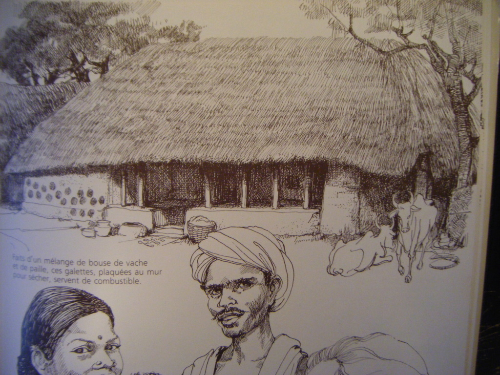 Les Portugais en Inde 1500-15 : transposition sur la table de jeu Ferme10
