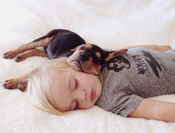 Rottweiler : On vous dit pourquoi il ne faut SURTOUT PAS en adopter un ! Kid-pu10