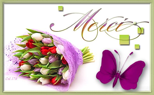 Bon Mardi 0660_t10