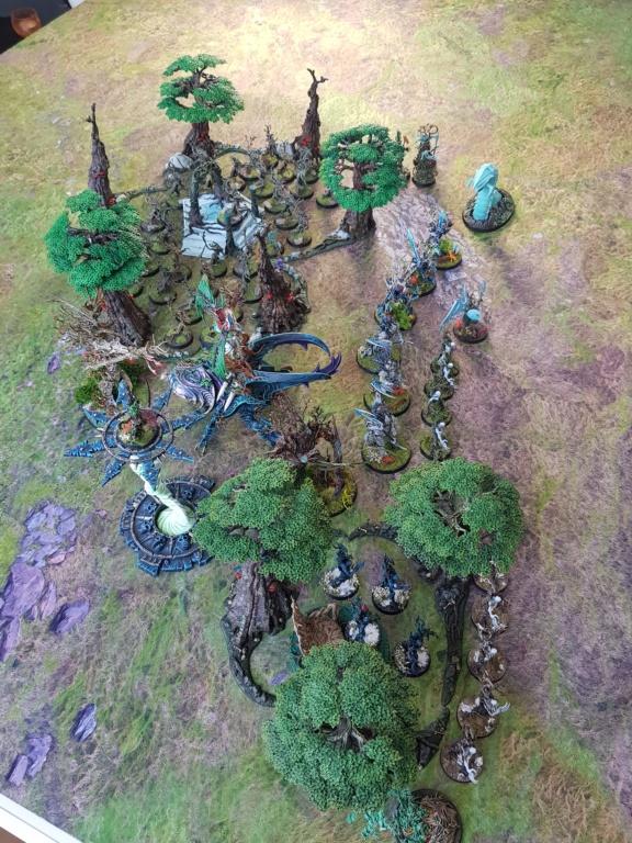[AOS] ARMIES ON PARADE: mes Sylvaneths 20200435