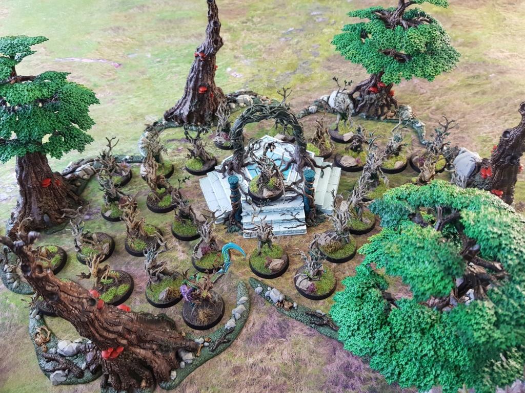 [AOS] ARMIES ON PARADE: mes Sylvaneths 20200441
