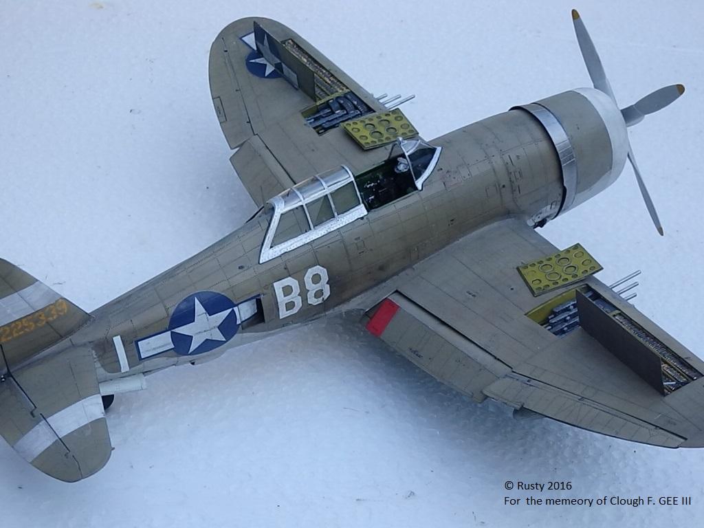 P-47D Thunderbolt : un avion, un pilote, un destin.  (Redux models 1/32) - Page 3 P1010050