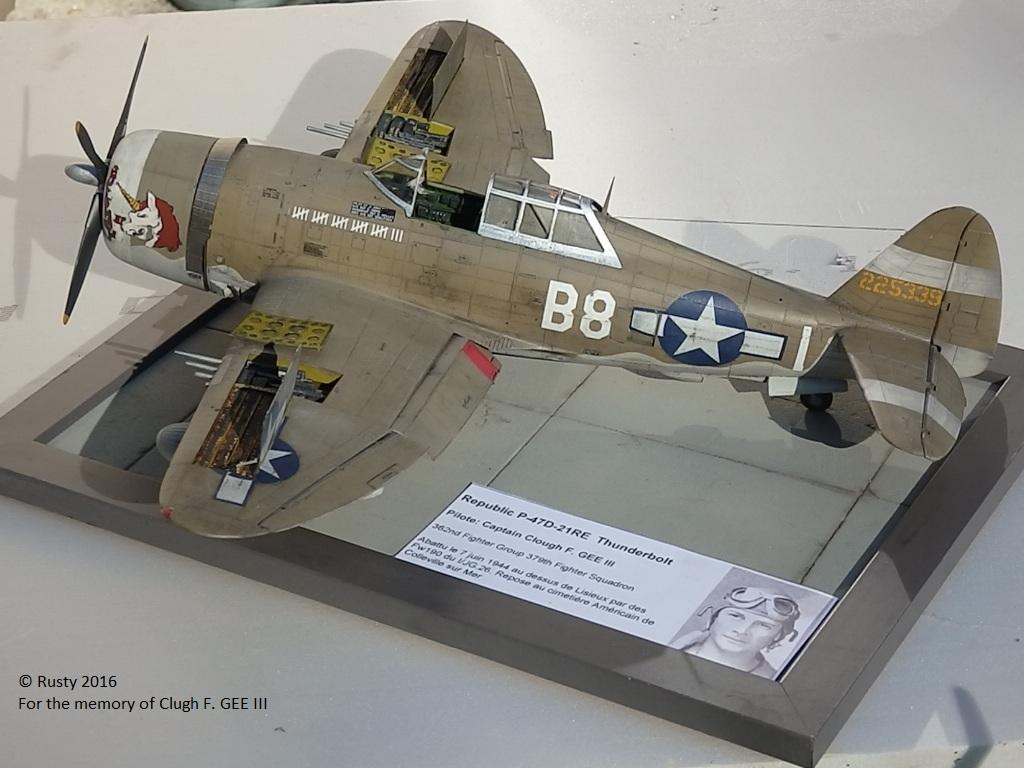 P-47D Thunderbolt : un avion, un pilote, un destin.  (Redux models 1/32) - Page 3 P1010055