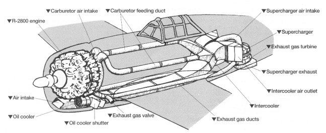 P-47D Thunderbolt : un avion, un pilote, un destin.  (Redux models 1/32) - Page 2 Princi10