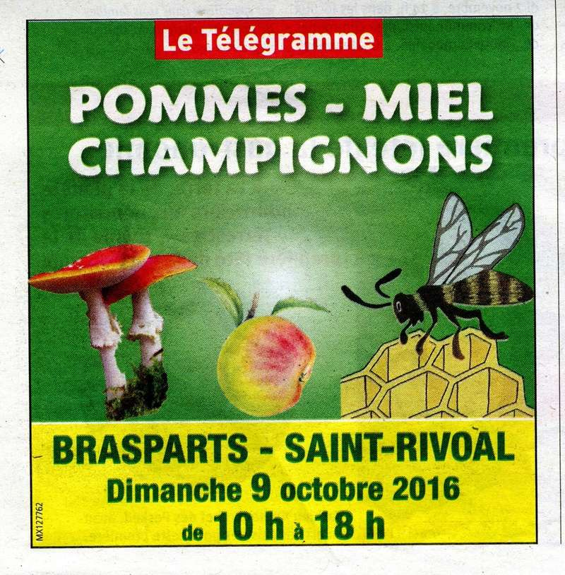 Pommes, miel et champignons le 9 octobre 2016 Pommes10