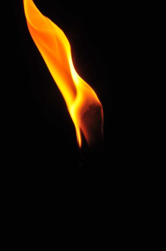 Torche Torche11