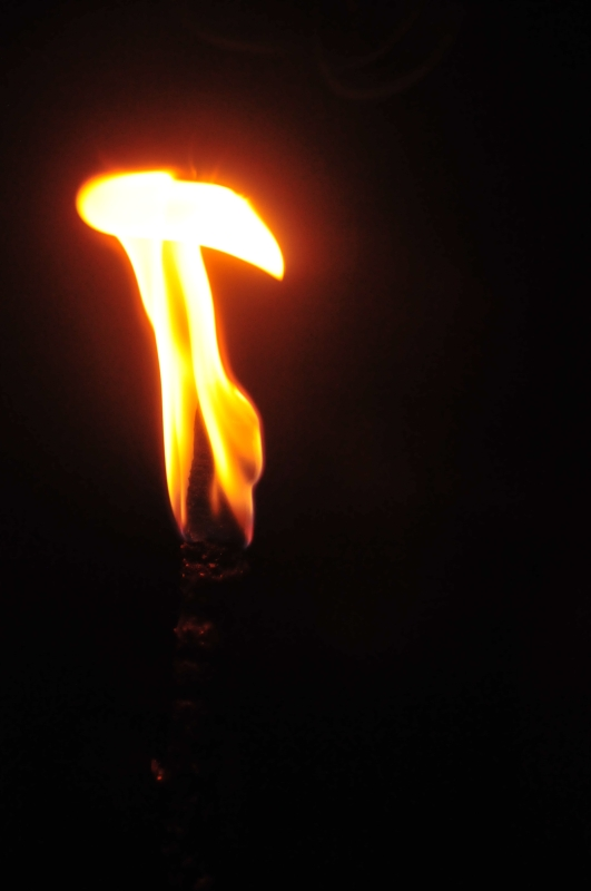 Torche Torche12