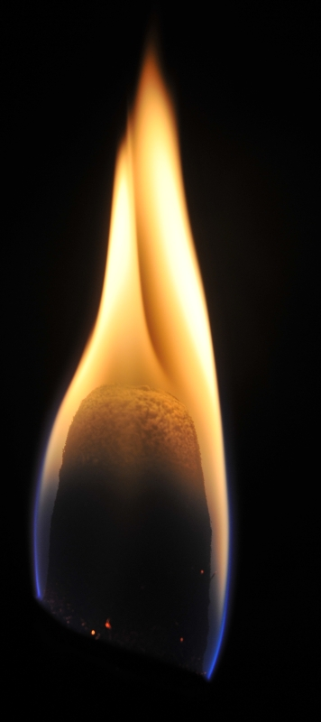 Torche Torche13