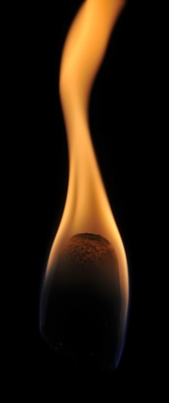 Torche Torche14