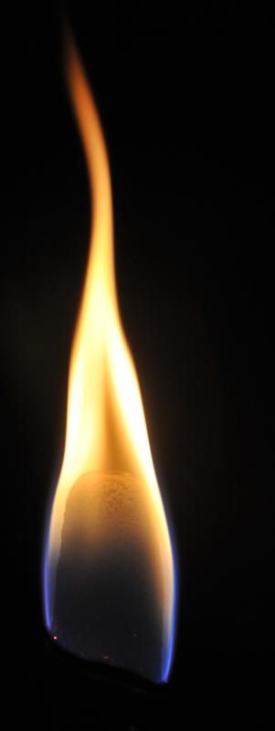 Torche Torche15