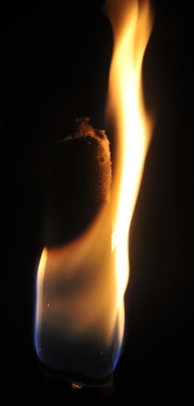 Torche Torche16