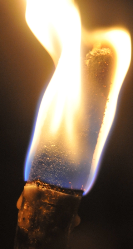 Torche Torche17