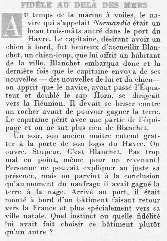 [ Les traditions dans la Marine ] LES MASCOTTES DANS LES UNITÉS DE LA MARINE - Page 29 0407