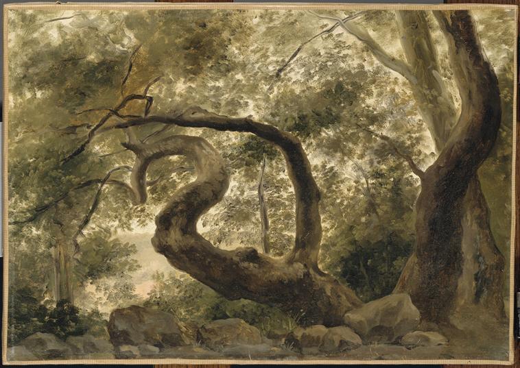 Fin XVIIIe début XIXe Pierre-Henri de Valenciennes et le paysage néoclassique L_01310