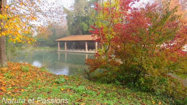 Présentation photos concours d'octobre E11