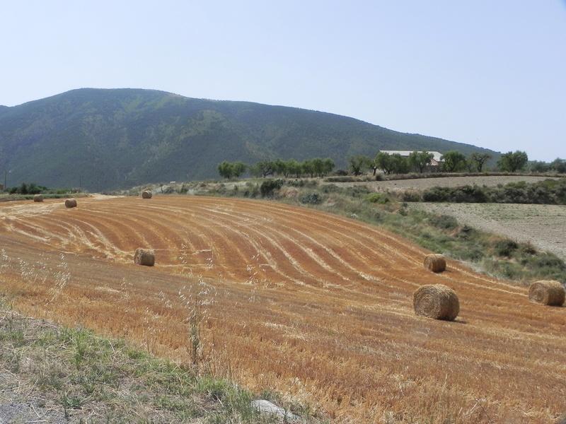 Reco Pyrénées Espagnoles Juillet 2016 Dscn2526