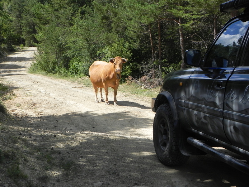 Reco Pyrénées Espagnoles Juillet 2016 Dscn2644